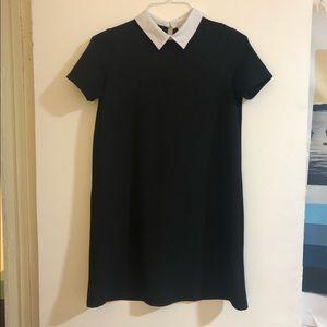 ZARA White Collar Black Mini Dress 🖤